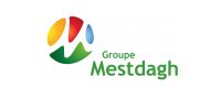 Groupe-Mestdagh-corpo-2013.png